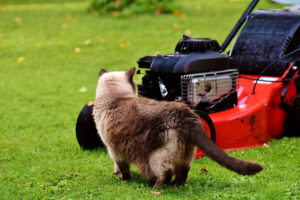 Why are lawnmowers so loud